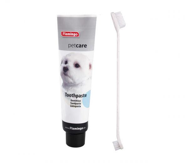 Zahnpasta-Pflege-Set