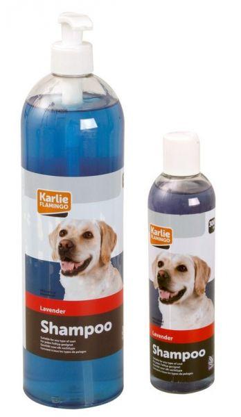 Lavendel-Shampoo