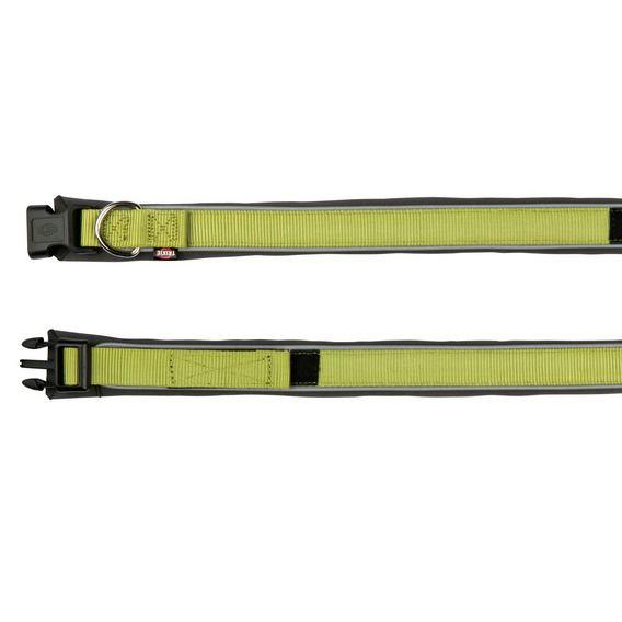Premium Halsband mit Neopren-Polsterung