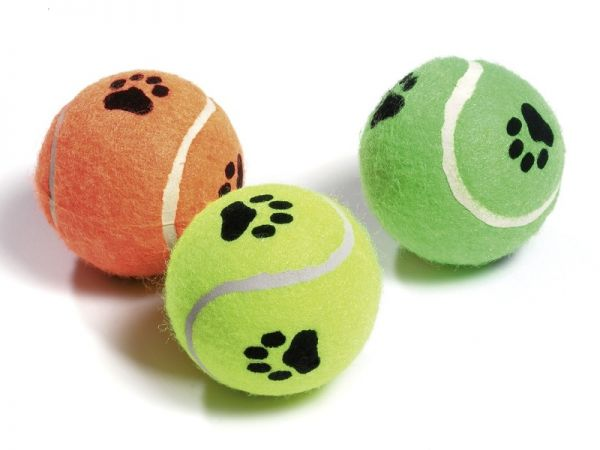 Tennisbälle mit Squeker