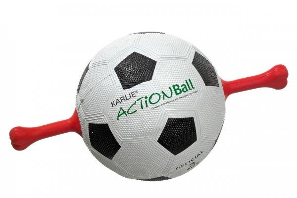 Action-Ball Hundefußball