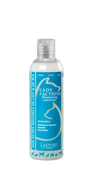 Lady Bel Shampoo: 3 Actions