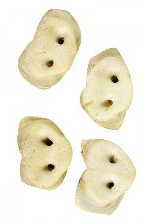 Honignasen