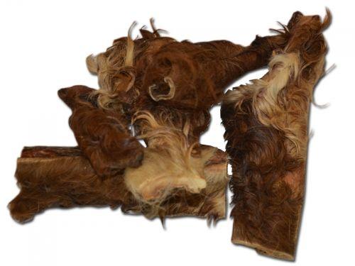 Rinderkopfhaut mit Fell