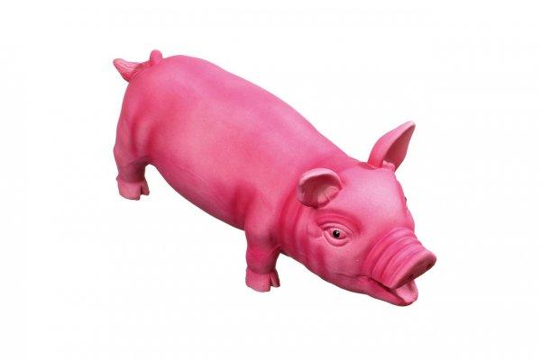 Latexschwein groß